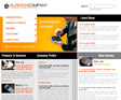 Website Template 010